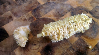 corn cob, dog food, dangerous dog food