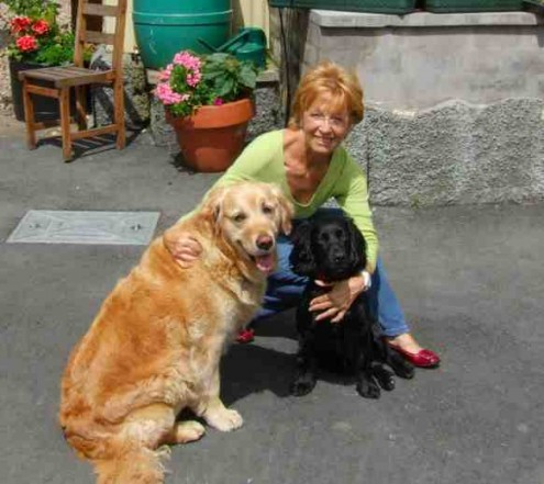 house sitting, pet sitting, with dogs,  - How to Choose the Perfect House & Pet Sitter